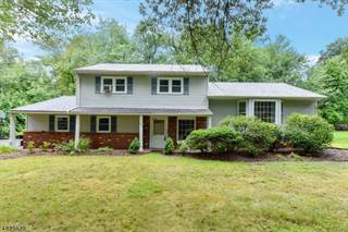 Single Family for sale in 457 JAMES WAY, Wyckoff, NJ, 07481