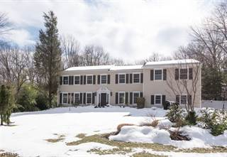 Single Family for sale in 38 DEAN RD, Mendham, NJ, 07945