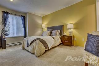 bedroom apartments for rent in lincoln 1 2 bedroom apartments