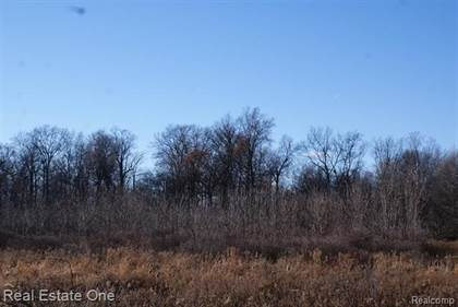Lots And Land for sale in 1 S ELBA Road, Lapeer, MI, 48446