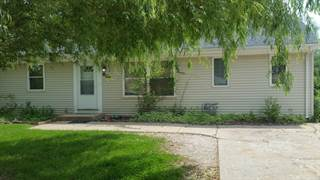 Single Family for sale in 809 North MAPLE Street, Prospect Heights, IL, 60070