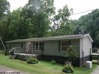 Single Family for sale in 3143 Canton Road, West Union, WV, 26456