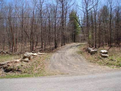 Lots And Land for sale in 0 Peaceful Valley RD, New Castle, VA, 24127
