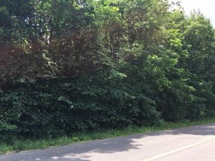 Lots And Land for sale in DOUGLAS Road 318, Pleasant Valley, IN, 46561