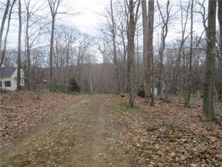 Land for sale in 2 Pumping Station Road, Torrington, CT, 06759