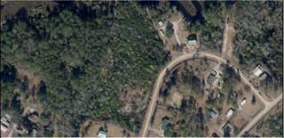 Land for sale in 200 Chestnut Street, Grantsboro, NC, 28529