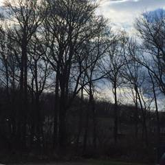Land for sale in 0 Woodrow Road, Staten Island, NY, 10312