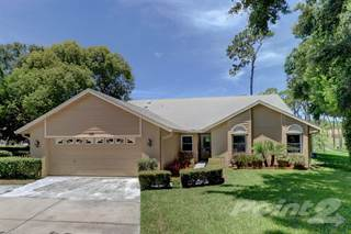 Single Family for sale in 3178 Montrose Court , Palm Harbor, FL, 34684