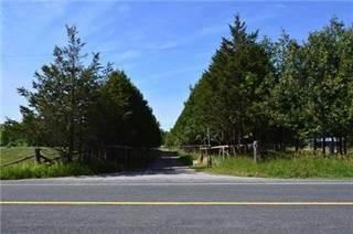 Farm And Agriculture for sale in 7818 Old Homestead Rd, Georgina, Ontario, Xxxxxx