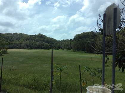 Residential Property for sale in Bo. Rio Arriba, Poniente, Manati PR, Rio Arriba Poniente, PR, 00674