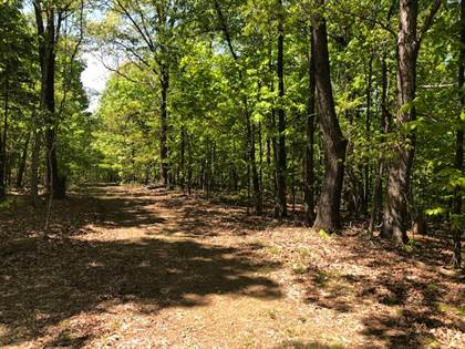 Lots And Land for sale in TBD2 Muddy Lane, Imboden, AR, 72434
