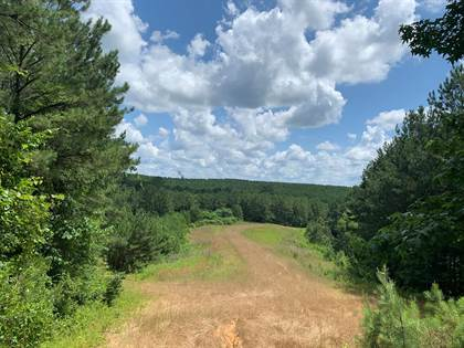 Lots And Land for sale in 0 Liberty Rd, Roxie, MS, 39663