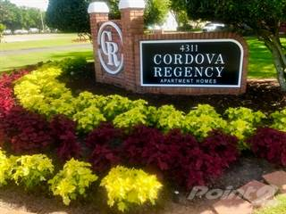 Apartment for rent in Cordova Regency - The Camelia, Pensacola, FL, 32503