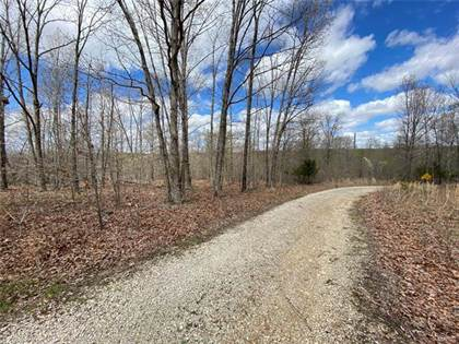 Lots And Land for sale in 0 Tract 1 Off Madison 9238, Fredericktown, MO, 63645
