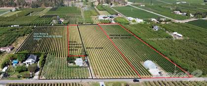 Farm And Agriculture for sale in 5450 Sunflower Street, Oliver, British Columbia, VOH1TO