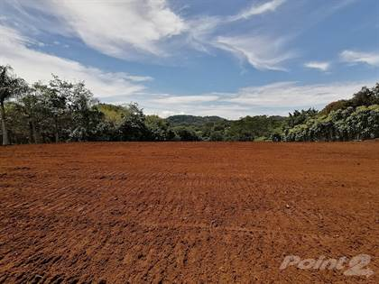 Residential Property for sale in Must see!! Gorgeous 3, 8 acres building lot, for self-sufficient living., Atenas, Alajuela