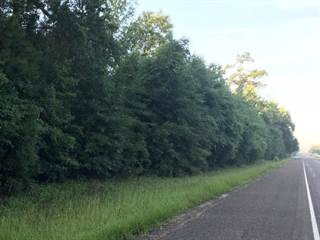 Land for sale in TBD Hwy 63 East, Jasper, TX, 75951