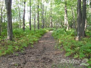 Land for sale in 4572 Anderson Avenue, Ramara, Ontario