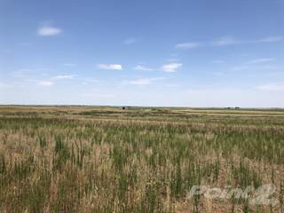 Farm And Agriculture for sale in County Road 15, Lakeview, TX, 79239
