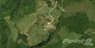 Farm And Agriculture for sale in Bo. Caguanas, Utuado PR, Utuado, PR, 00641
