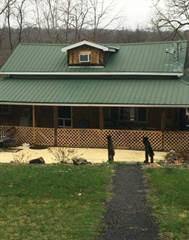 Single Family for sale in 20 Bear Claw Hollow, Lewistown, PA, 17044