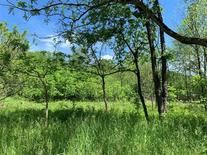 Lots And Land for sale in X RT 23, Alma, WV, 26320