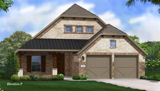 Single Family for sale in 2521 Boot Hill Lane, Fort Worth, TX, 76177