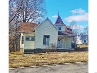 Single Family for sale in 523 North 5th, Vandalia, IL, 62471