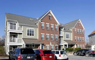 Apartment for rent in The Willows at Port Capital - Formerly Port Capital Village, Elkridge, MD, 21075