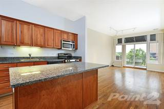 Apartment for rent in 2010 W Pierce Apartments - 2 Bedroom - 2 Bath, Chicago, IL, 60622