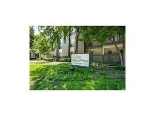 Condo for rent in 4837 Cedar Springs Road 222, Dallas, TX, 75219