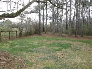 Land for sale in 2275 Mountain Road, Milton, GA, 30004