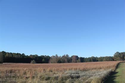 Lots And Land for sale in 1000 Highway 72, Early Grove, MS, 38642