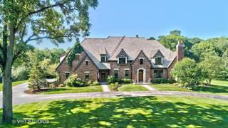 Single Family for sale in 34W791 Army Trail Road, Wayne, IL, 60184
