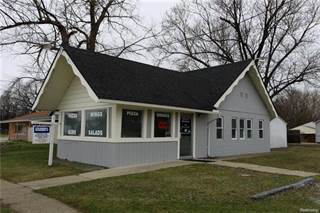 Comm/Ind for sale in 4188 FENTON Road, Flint, MI, 48507
