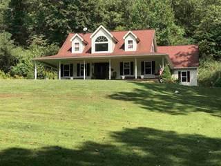 Single Family for sale in 906 Teel Branch Road, Huntington, WV, 25704