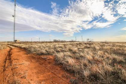 Lots And Land for sale in 121 County Road, Brownfield, TX, 79316