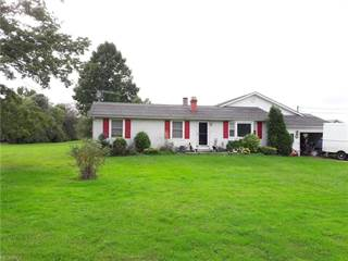 Single Family for sale in 1741 State Route 46 North, Jefferson, OH, 44047