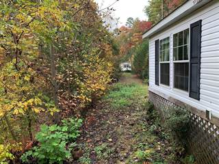 Single Family for sale in 406 Lower Tuskeegee Road, Robbinsville, NC, 28771