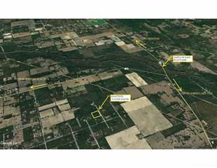 Farm And Agriculture for sale in 0000 SW Courage Court, Annutteliga Hammock, FL, 34614