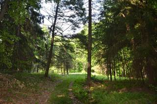 Land for sale in E OF TURKEY HILL RD, Stroudsburg, PA, 18360