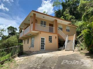 Residential Property for sale in Utuado Bo Salto Abajo, Utuado, PR, 00641