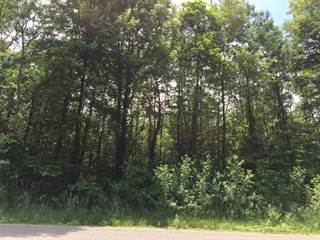 Land for sale in DOUGLAS Road 313, Pleasant Valley, IN, 46561