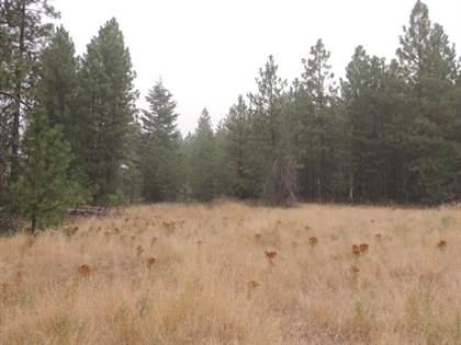 Lots And Land for sale in Hwy 231, Springdale, WA, 99173