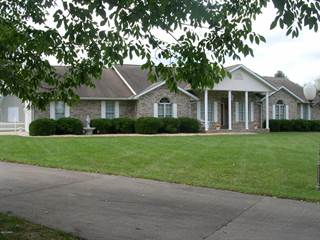 Single Family for sale in 707 6th Street, Vienna, IL, 62995